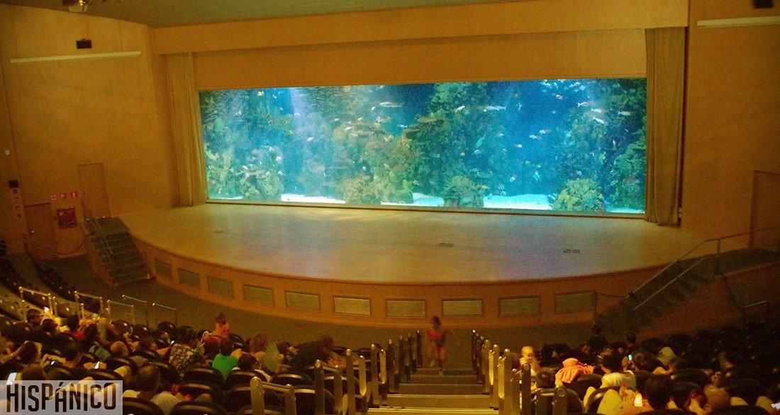 ciudad-de-las-artes-y-las-ciencias-oceanografico-teatro