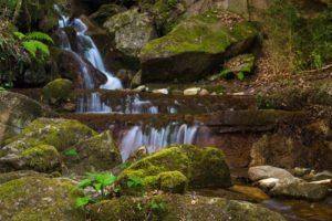 Park Naturalny Garrotxa, Katalonia // Hispanico.pl