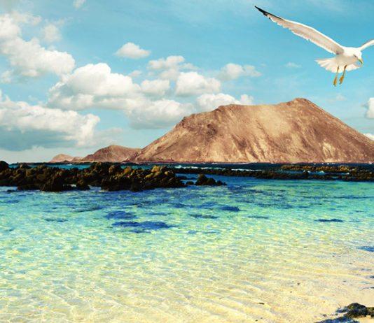 Fuerteventura to kanaryjska wyspa położona na Oceanie Atlantyckim