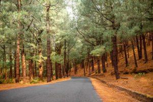 La Palma - Piękna wyspa | Odkrywamy Wyspy Kanaryjskie, Hiszpania // Hispanico.pl