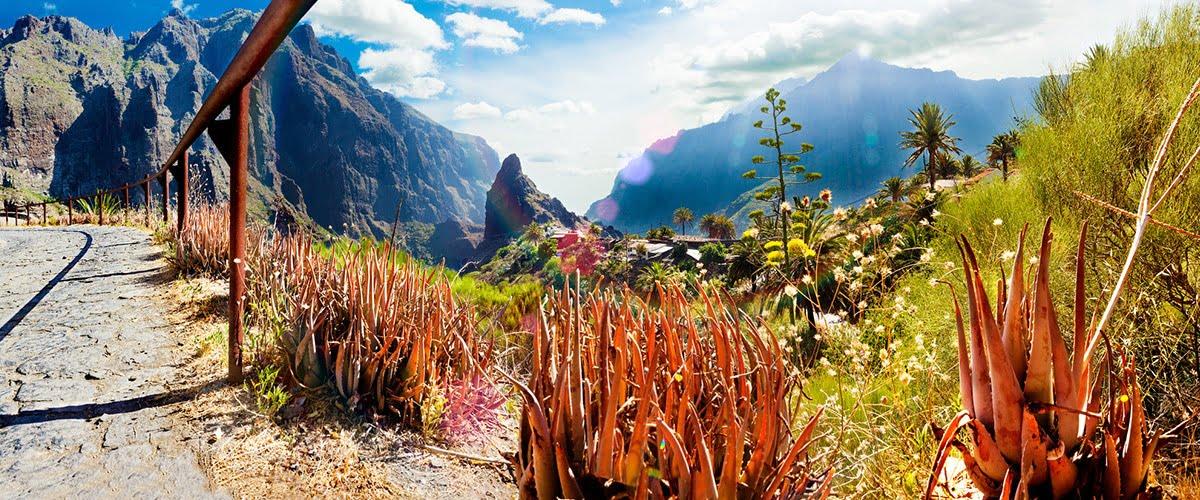 Atrakcje naturalne na Teneryfie | Wyspy Kanaryjskie, Hiszpania // Hispanico.pl