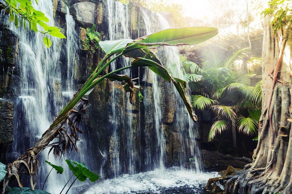 Wodospad to jedna z atrakcji w Palma Aquarium